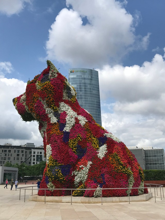 puppy dog in front of Guggenheim museum in Bilbao