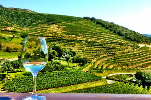 TXAKOLI WINE IN GETARIA San Sebastian
