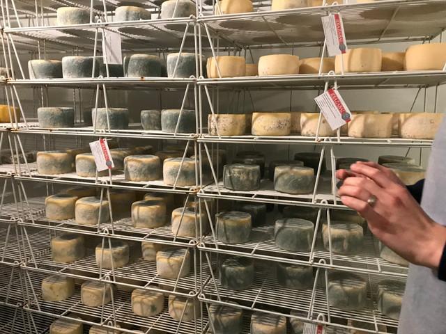 Idiazabal Cheese Maker